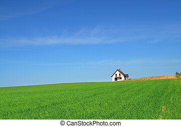 little house in grass field - little summer house in grass...