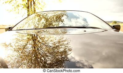 Car with mirroring trees - Car Driving In A Alley