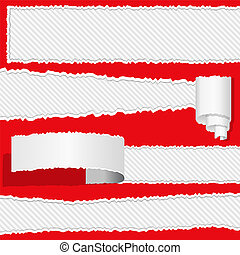 Ripped paper - Different ripped paper, vector eps10...