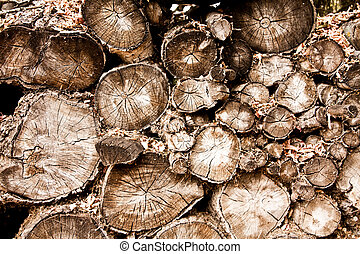 Wood Pile on Many Logs - a background of a wood pile with...