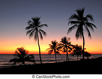 tropical sunset - a beautiful sunset on Sanibel Island...