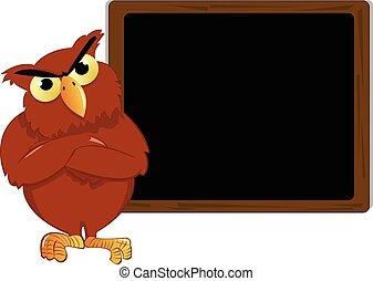 funny owl near a blank blackboard