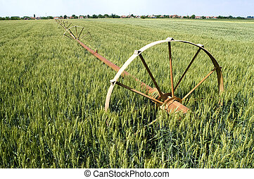 Water supply - Green wheat field with irrigation system...