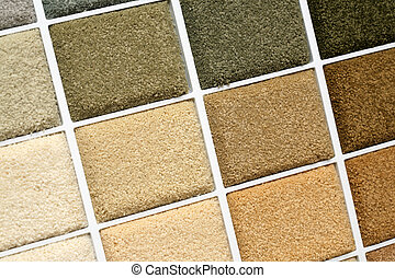 carpet covering - Samples of color of a carpet covering