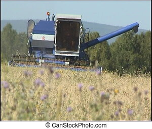Agriculture - The Combine takes away the wheat