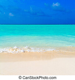 Summer Landscape of Tropical Beach - Colorful Hot Summer...
