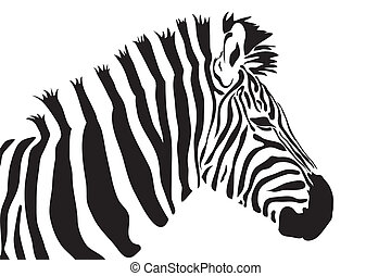 zebra vector outline silhouette