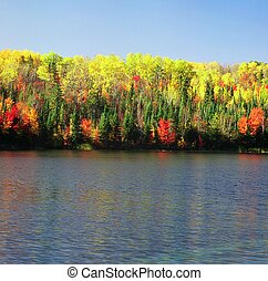 Blind Ash Bay ~ Kabetogama Lake - Vibrant autumn foliage...
