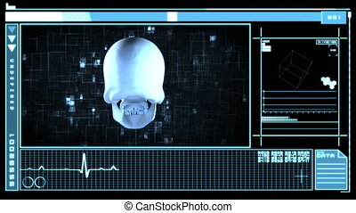Medical interface showing skull - Medical digital interface...