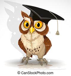 sábio, coruja, boné, graduado