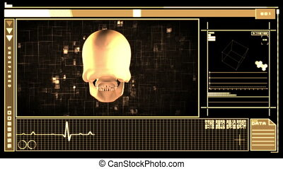Digital interface showing skull - Medical digital interface...