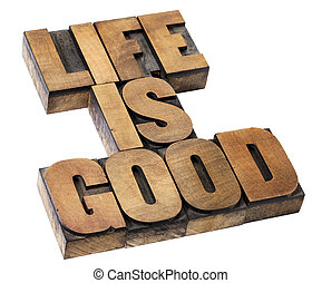 life is good - positivity concept - isolated text in vintage...
