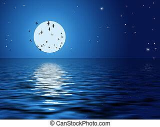Moon, birds, stars, ocean