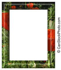 photo of framework. - photo of framework. Isolated on a...
