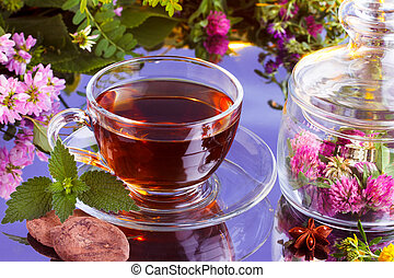 Fresh herbal tea with natural cocoa