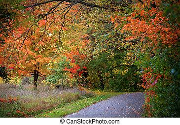 Michigan fall - Scenic trail through a park in Michigan