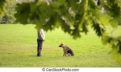 Dog trainer feeding pet in park - Man and pet, dog trainer...