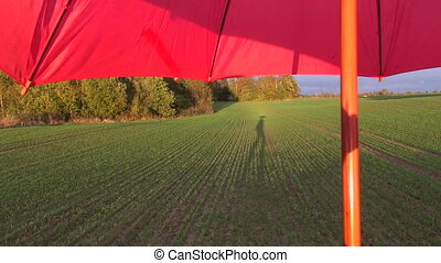 red umbrella and shadow on field