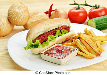appetizing hot dog - Tasty and appetizing hot dog with fries...