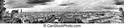Paris panoramic - Landscape of Paris seen from Notre Dame