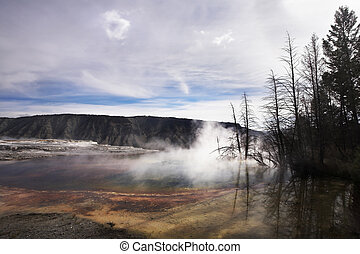 Yellowstone national Park - Hot fog above geothermal springs...