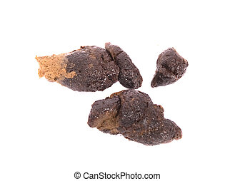 small poo - poo of my dog on the white background