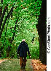 Sênior, floresta, andar, homem