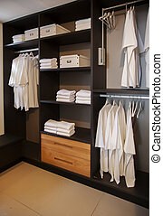 dress closet in bed room