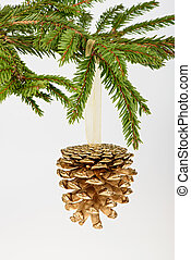 Golden pine cone on conifer branch