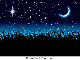 Moon space grass - Long grass with space scape and bright...