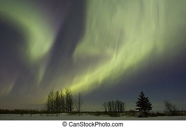 Aurora borealis over fields in March 2008, Gilbert Plains,...