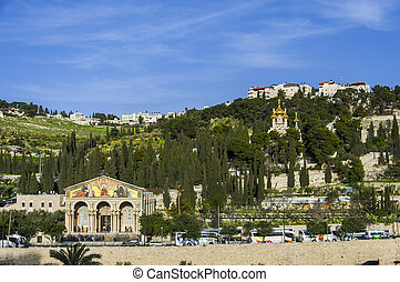 Mount Olives - View of Mt. Olives with the Church of All...