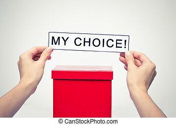箱子, 概念, 選票, 選舉