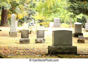 Burial site  - Burial sites at a cemetery.
