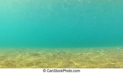 Underwater background - Diving Underwater footage Shot in...