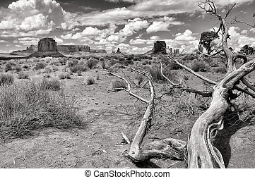 Monument valley black and white landscape view, USA