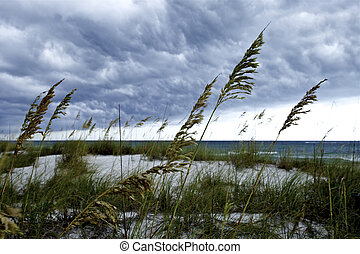 Storm Clouds over Sea oats - Storm front over sand dunes and...