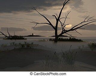 mist on swamp - Dawning on marsh, mist on swamp,...