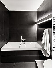 Modern minimalism style bathroom interior in black and white...