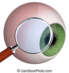 Eye With Loupe - Eye with loupe on the white background