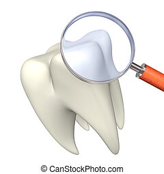 Tooth With Loupe - White tooth with loupe on the white...
