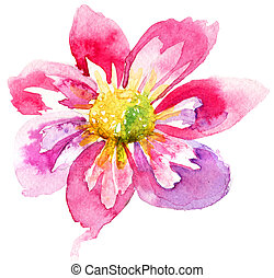 Beautiful Pink flower, Watercolor painting
