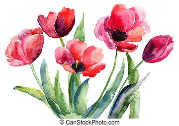 színes, Ábra, piros, tulipánok,...
