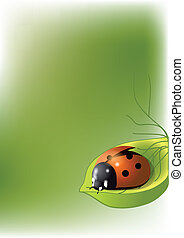 background with ladybug