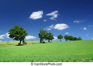 blissful summer landscape with tree line and cumulus clouds