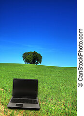 serene grassland and a notebook