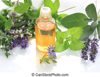 Herbs and oil - Fresh herbs and oil in bottle - spa...
