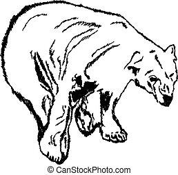 Illustration of polar bear