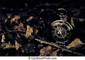 Tick Tock - Vintage Pocket Watch with Fall Leaves - Time -...