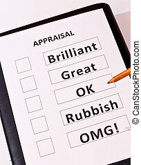 Fun performance appraisal form - A fun performance appraisal...